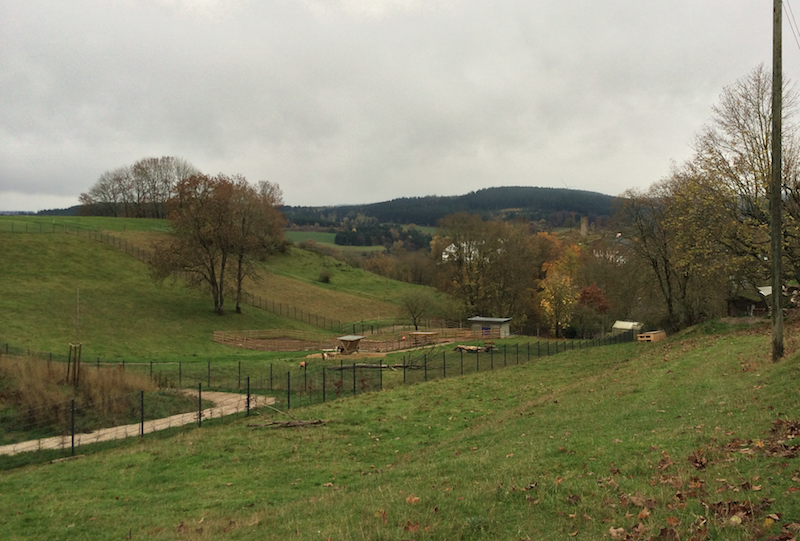 Holiday picture from the Eifel region. Kronenburg castle, small, in the middle.